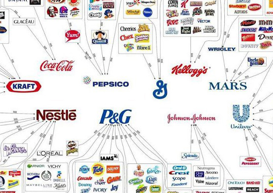 Small amount of big companies each own a huge stable of brands